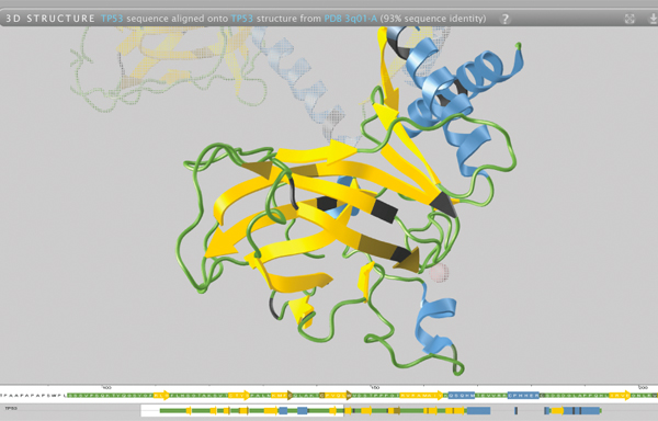Powerful tool promises to change the way scientists view proteins