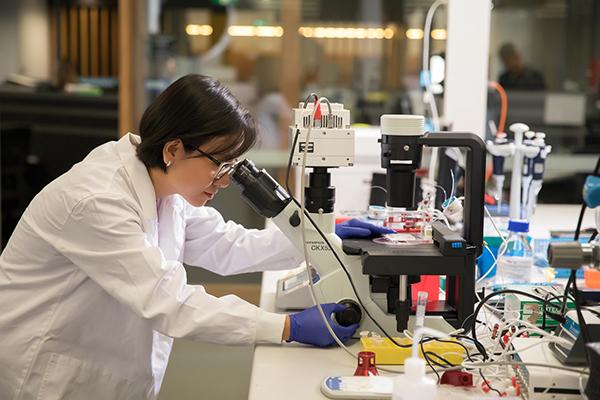 St Vincent's Clinic Foundation Grants for Garvan researchers
