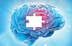 The path to understanding Parkinson's disease