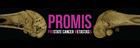 ProMis Header Image