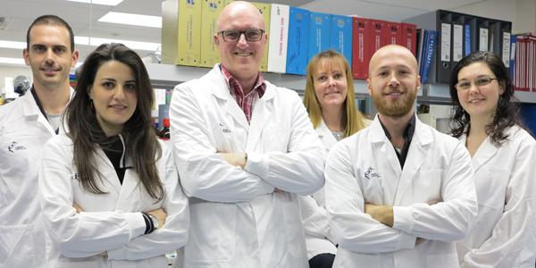 Grey lab team - small