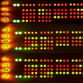 Cytokine arrays used to compare proteins like BAFF