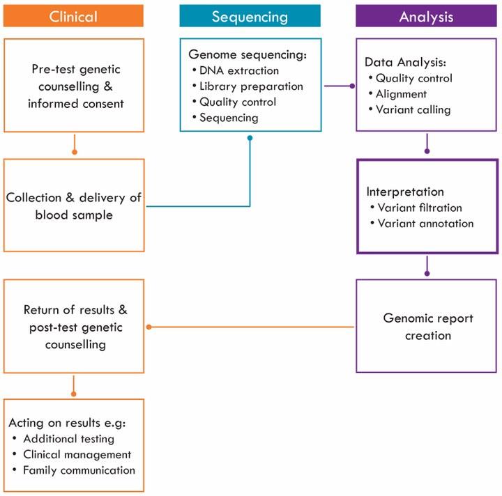 genomictestingprocess